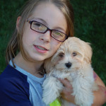 Havanese puppy, Emmy, gets lots of love from her new Forever Family!